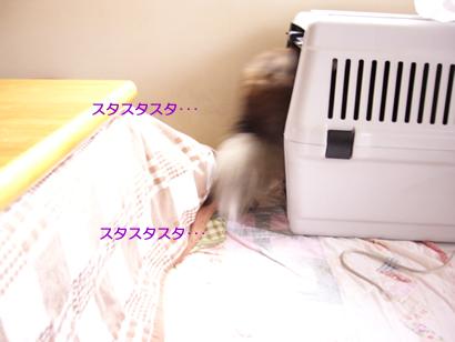 0704-2604.jpg