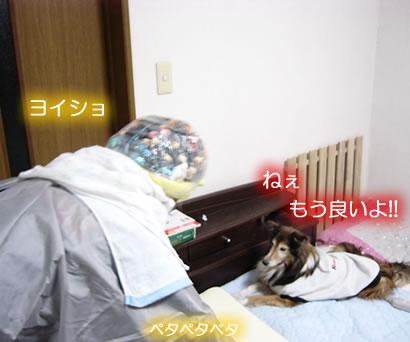 0711-2805.jpg